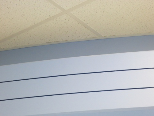 Reveal Beads were installed in the school cafeteria at Oak Grove Junior High to add visual details to the soffits in Libertyville, IL.